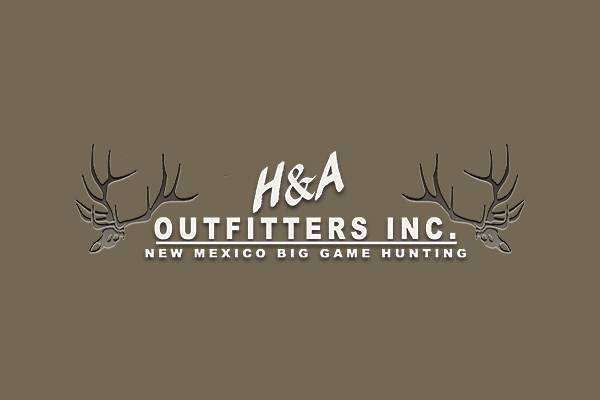 Why H&A Outfitters, Inc?