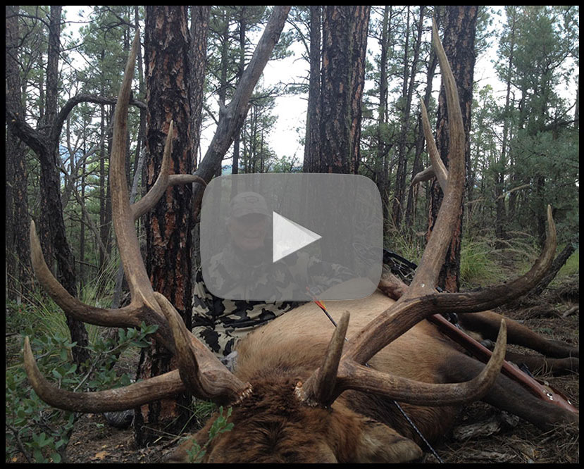 New Mexico Elk Hunting with H&A Outfitters, Inc. Hunting Application Service