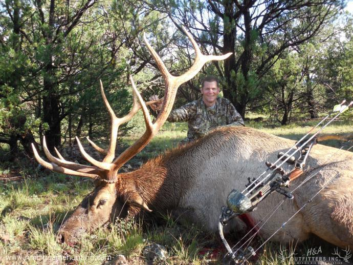 New Mexico Archery Elk Hunts