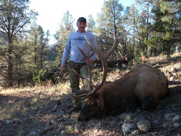 Cibola National Forest Muzzleloader Elk Hunt