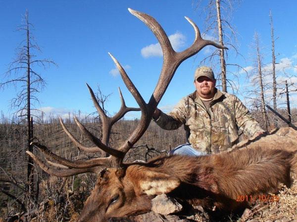 Rifle Elk Hunts Gila National Forest