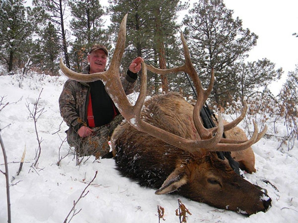 Rifle Elk Hunting New Mexico