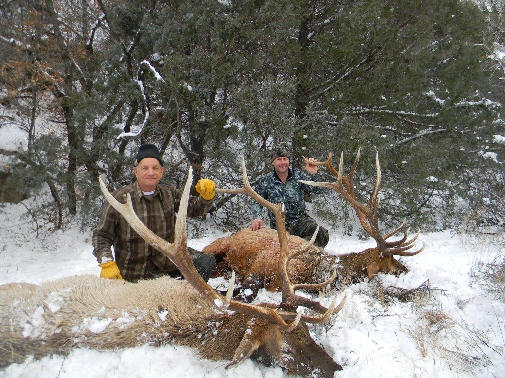 Rifle Elk Hunts - Units 5B, 6A, 6C