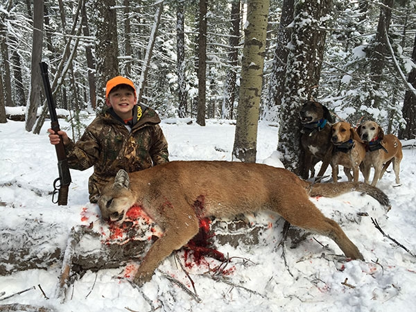 Youth Mountain Lion Hunts